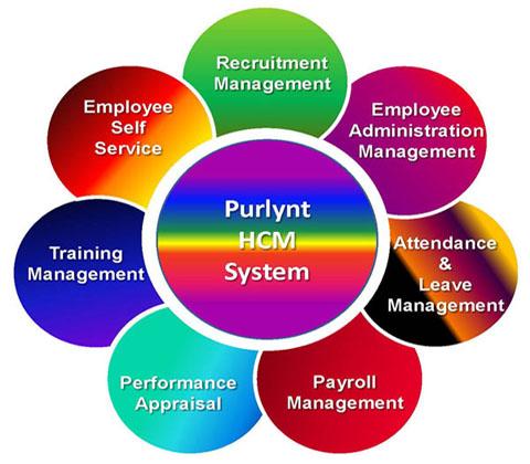 human capital management system